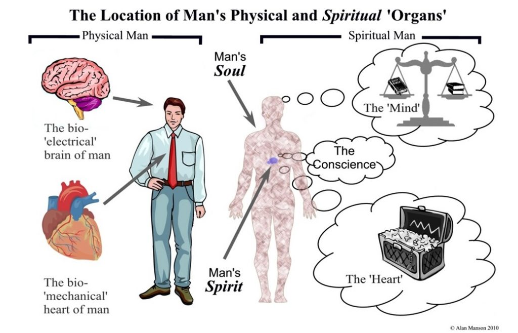 The location of our physical and spiritual organs within our 'Outer' and 'Inner' man