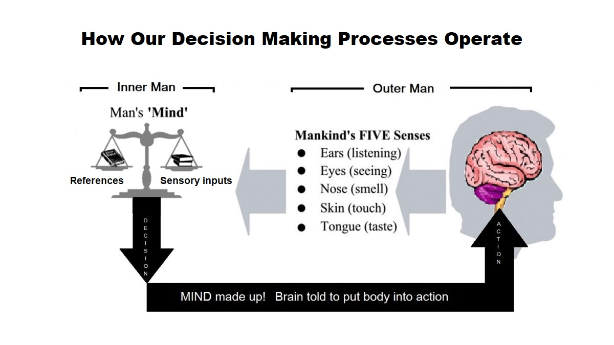 How our decision making processes operate